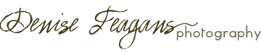 Denise Feagans Photography logo